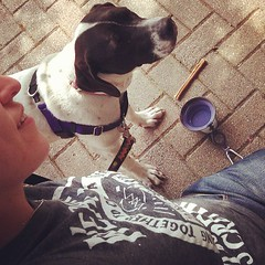 #selfie attempt with puppy at great lakes patio #remitrip13 #dogsofinstagram #catahoula