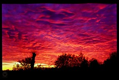Lomo Red Sky Sunset