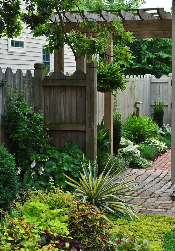 MacKinlay Garden (8)