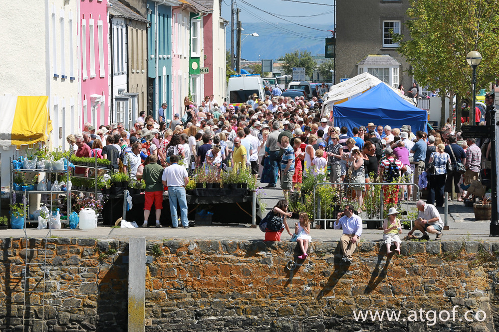 Seafood festival draws the crowds in mid Wales.