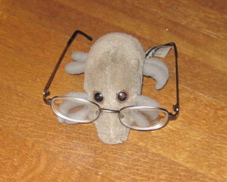 Dust Mite bifocals