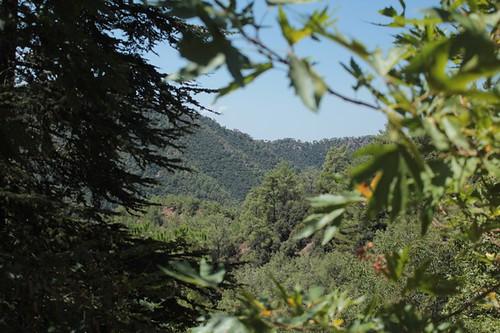 Vista sui monti Trodos