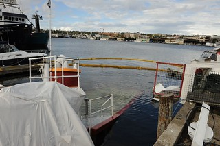 The 72-foot tug Iver lies in approximately 16 feet of water after sinking at the pier at Mariner Properties on Lake Union near Seattle, Sept. 30, 2013. The tug, which had been converted into a houseboat, sank early in the morning, discharging approximately 200 gallons of diesel fuel. U.S. Coast Guard photo by Petty Officer 3rd Class Katelyn Tyson.