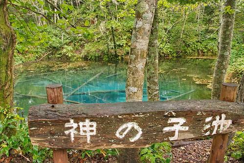 【写真】2013 : 神の子池/2021-01-28/PICT2008