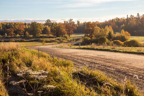 road autumn latvia rudens ceļš