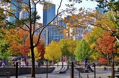 Central Park-Heckscher Playground, 11.02.13