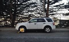 mini sport utility vehicle(0.0), automobile(1.0), automotive exterior(1.0), sport utility vehicle(1.0), wheel(1.0), vehicle(1.0), compact sport utility vehicle(1.0), crossover suv(1.0), ford escape(1.0), bumper(1.0), ford escape hybrid(1.0), land vehicle(1.0),