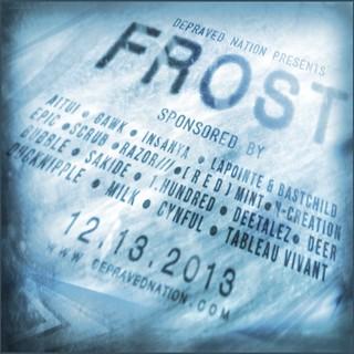 F R O S T 2013 Promo Flier