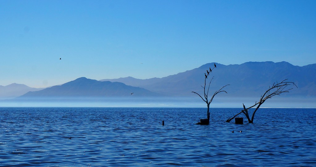 The view at Salton Sea