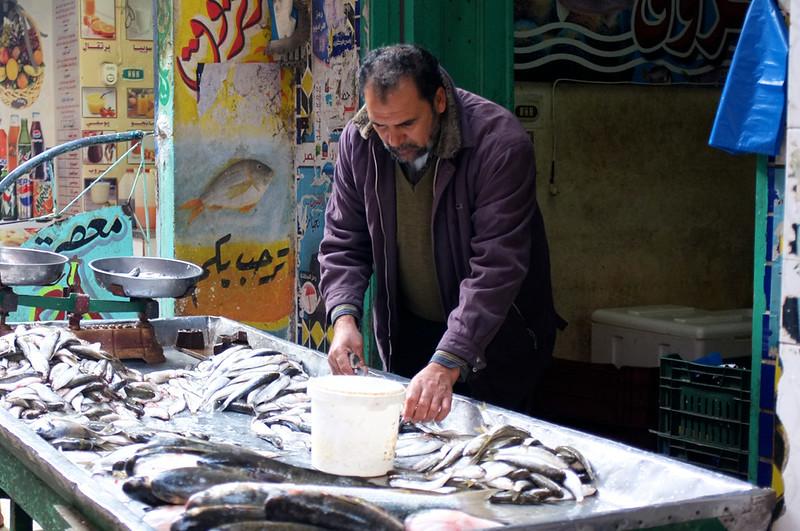 Pakcik Jual Ikan Ras El Bar 2