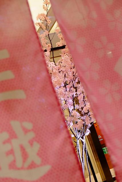 cherry blossoms Mitsukoshi Large store curtain (noren) Nihonbashi Sakura festival 24