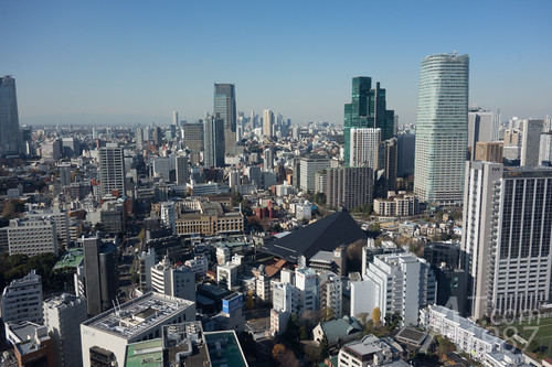 View from west side of Tokyo Tower