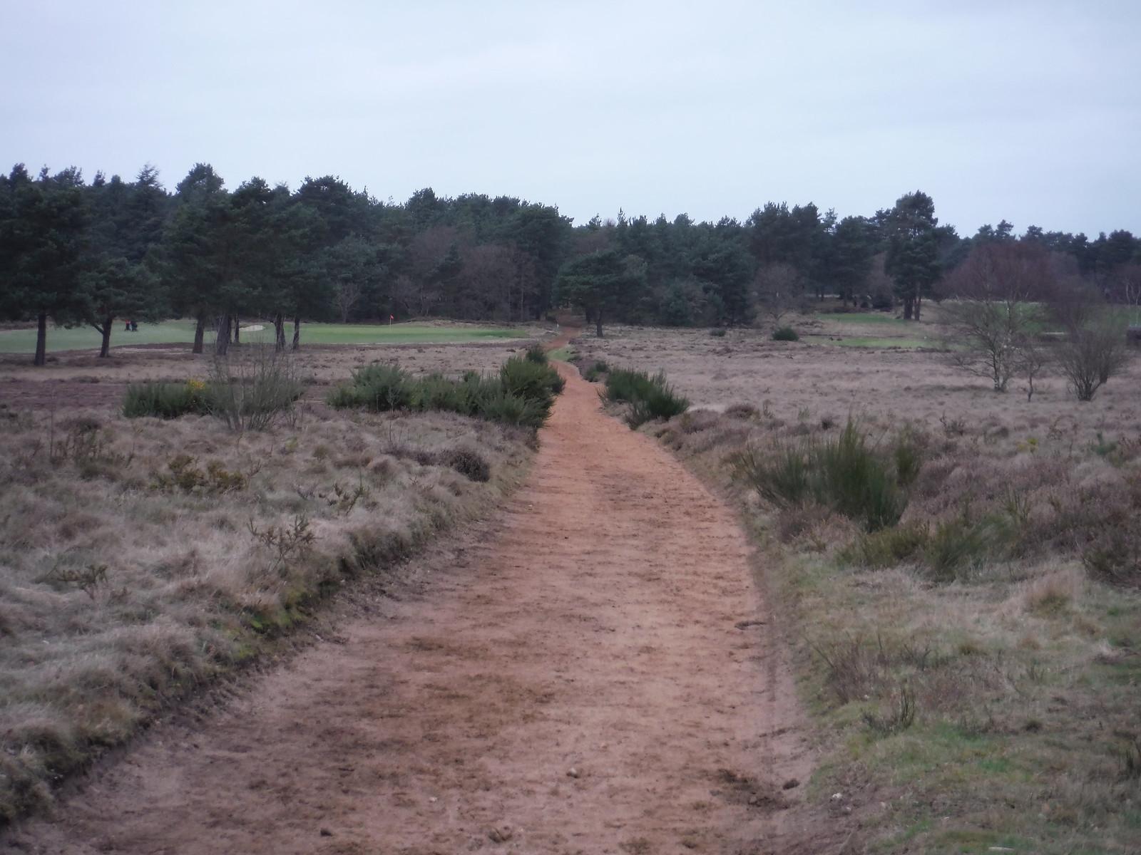 Path through Hankley Common Golf Club SWC Walk 144 Haslemere to Farnham