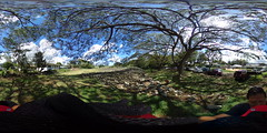 Ulupo Heiau State Monument - a 360 degree equirectangular VR