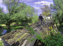 Old wooden bridge with Neven