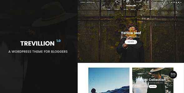 Trevillion WordPress Theme free download