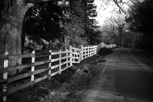 Fence and Road Study