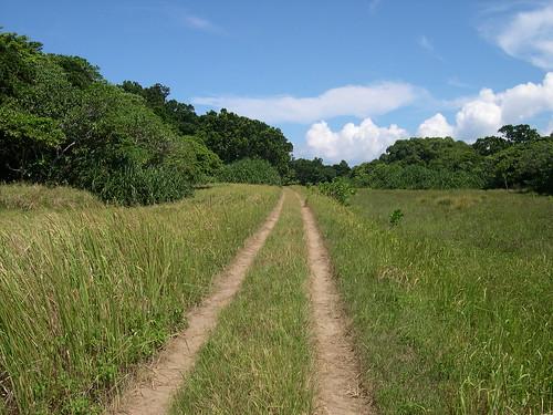 集落への道