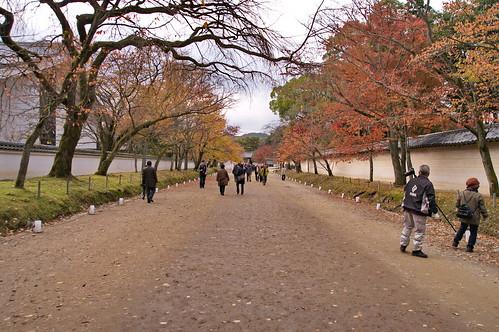 【写真】2012 紅葉 : 醍醐寺/2020-08-07/IMGP6840