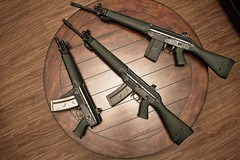 FAMAE Family of firearms
