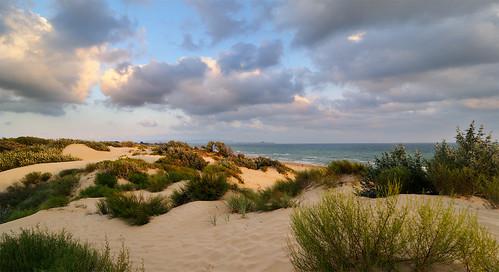 sunset sea summer sky clouds landscape geotagged sand cloudy russia dunes dune blacksea panoram sedge панорама закат небо россия пейзаж море anapa анапа облака песок sandwaves 2013 черноеморе дюны krasnodarskiykray осока nikond300 краснодарскийкрай tokinaaf12244 джемете djemete