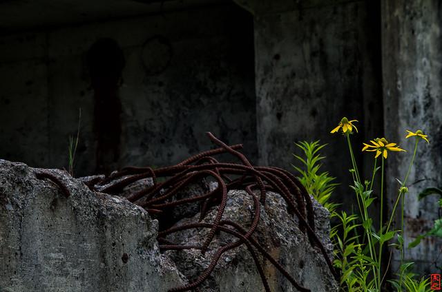 「生命」 三笠市幌内 - 北海道