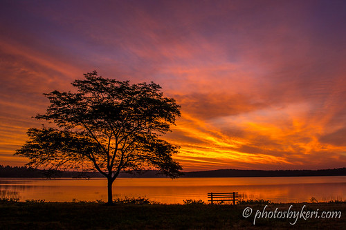 One Tree, One Bench, One Amazing Sky by KAM918