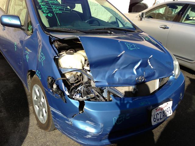 a deer hit me