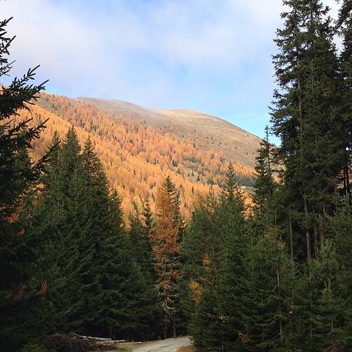 Die Region lädt zum Urlaub ein. Das ganze Jahr einfach traumhafte Bedingungen zum sporteln und erholen. #Gitschberg #Südtirol #Meransen