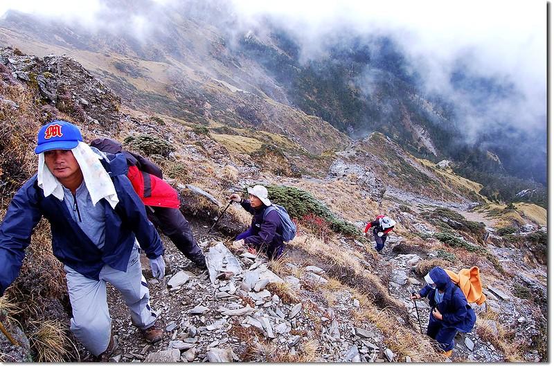 陡攀奇萊主山 3