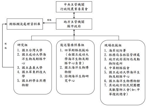 中華鯨豚擱淺處理組織網處理流程。