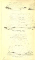 """British Library digitised image from page 828 of """"Report on the Geology of the County of Londonderry, and of parts of Tyrone and Fermanagh [With maps and plates.]"""""""