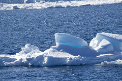 Antarctica - Day four0540