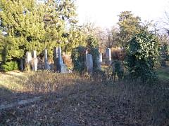 140106_Zentralfriedhof_110