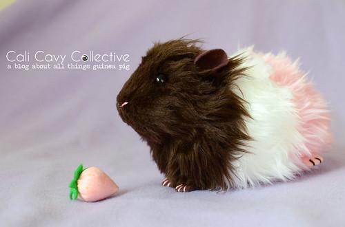 Neapolitan pig from Morumoto