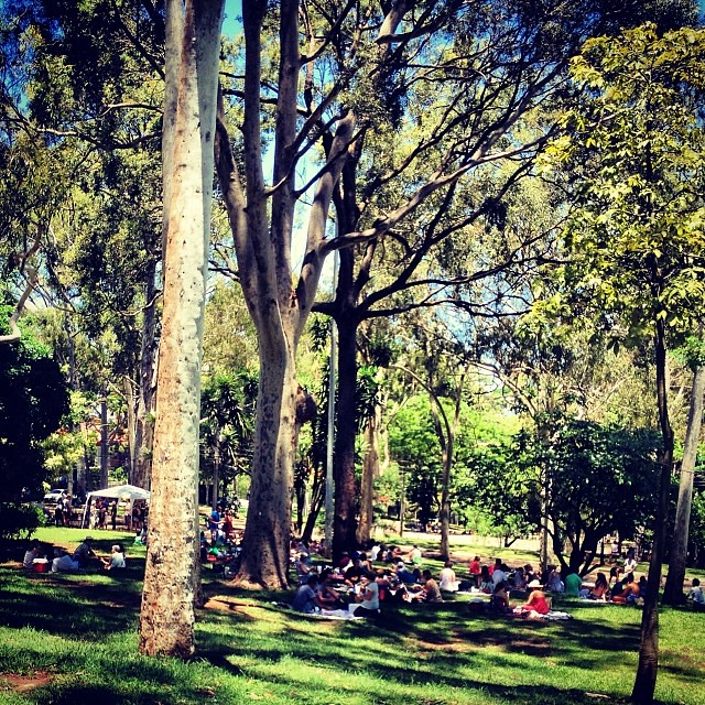 Nhocada no parque #parque #park #comida #italiana #nhoque #nhocada #pastificioprimo #vilamadalena #saopaulo