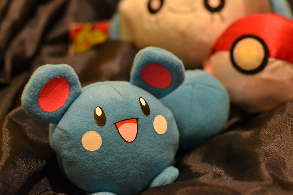 Pokemon I brought to Amy's birthday adventure as props