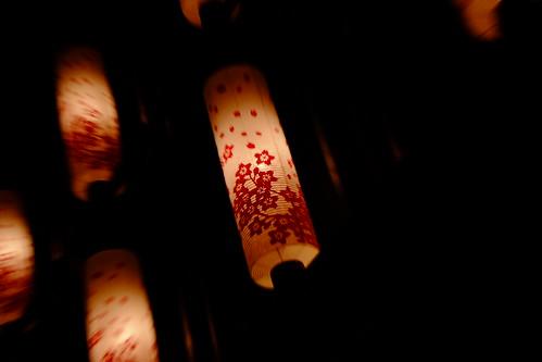 Sakura Lantern Nihonbashi Sakura festival 22
