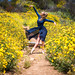 Fine Art California Wildflower Superbloom Ballet Photography: Nikon D810 Elliot McGucken Fine Art Ballerina Dancer Dancing Classical Ballet Seascape Landscape Photography! by 45SURF Hero's Odyssey Mythology Landscapes & Godde