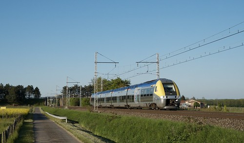 B 81751/52
