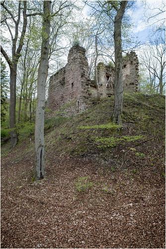 Ruins of Altenstein Castle .