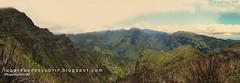 Vales de Ribeira Brava (Madeira, Portugal)