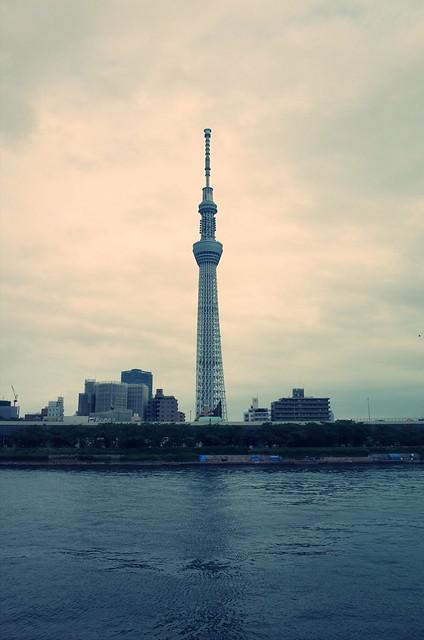 Tokyo Hotaru Light Symphony 2013-05 cross process