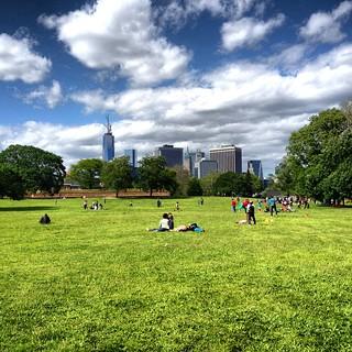 Field on Governor's Island - New York City