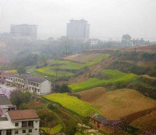 Hubei13-Wuhan-Chongqing-Shaanxi (17)