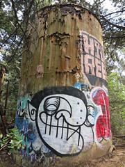 Woodlawn Cemetery Graffiti