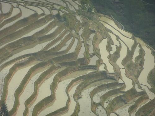 Yunnan13-Yuanyang 24-Bada (40)
