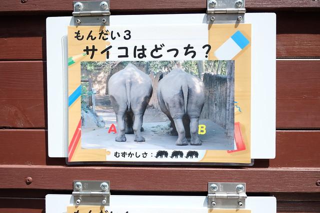 130901家族で日本平動物園 063
