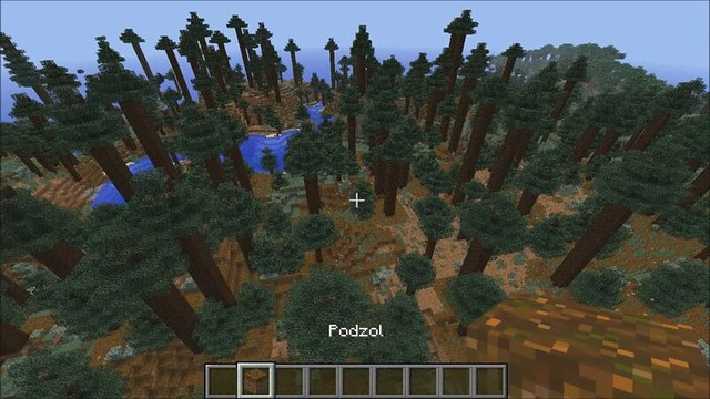 Header of podzol