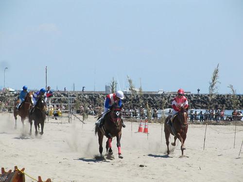 相良草競馬 Sagara Horserace